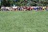 3rd DSU Men's Cross Country  -  Herb Blakely Invitational Photo